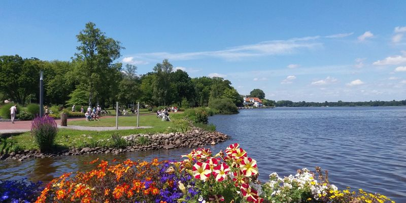Buntes Blumenbeet am Ufer des Zwischenahner Meer