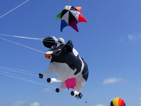 Ein Drachen in Form einer Kuh als Windspiel am Himmel von Norddeich