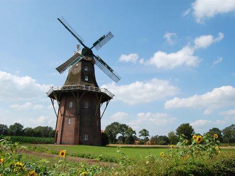 Außenansicht der Holtlander Mühle im Sommer