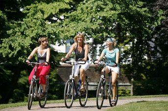 Fahrradvermietung Drahtesel Aurich