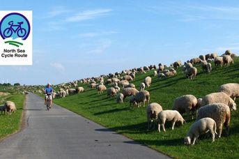 North Sea Cycle Route/ Nordseeküsten-Radweg