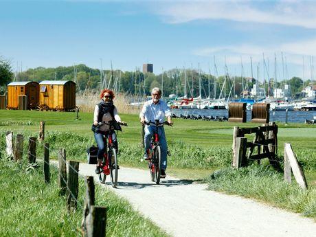 Radfahren in der Parklandschaft Ammerland