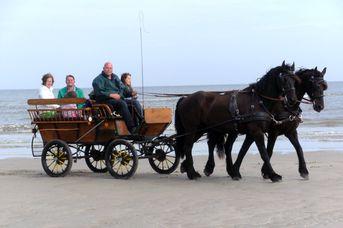 Kutschfahrten Norderney