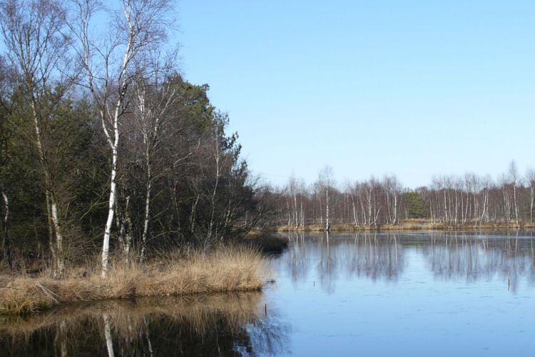 Das Bockhorner Moor