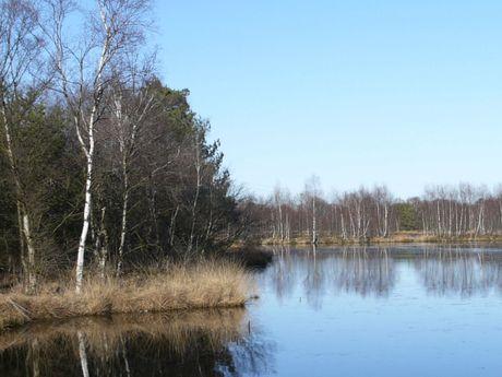 Bockhorner Moor
