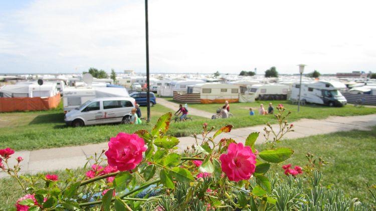 Nordsee-Camping