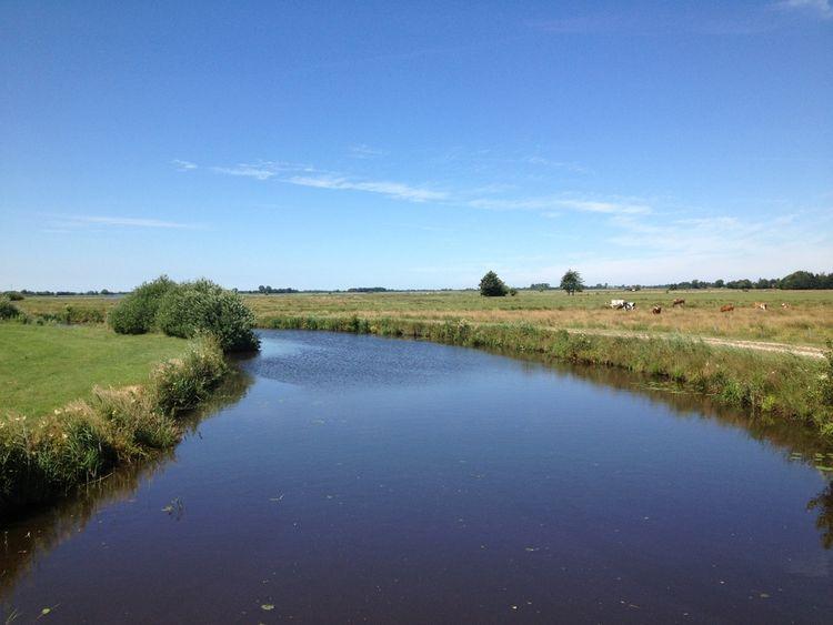 Blick auf den Ems-Jade-Kanal und die umliegenden Weiden