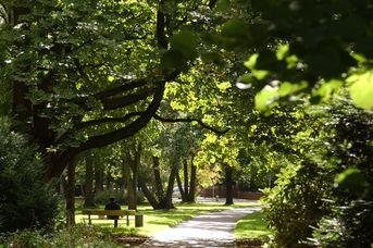 Friedrich-Wilhelm-Park