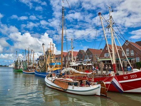 Die bunten Krabbenkutter liegen im Hafen von Neuharlingersiel an