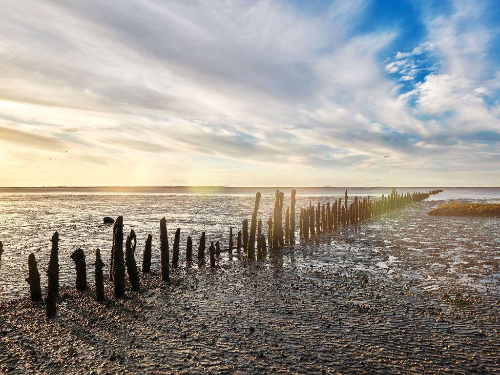 Blauer Himmel goldener Sonnenuntergang spiegeln sich im Wattenmeer