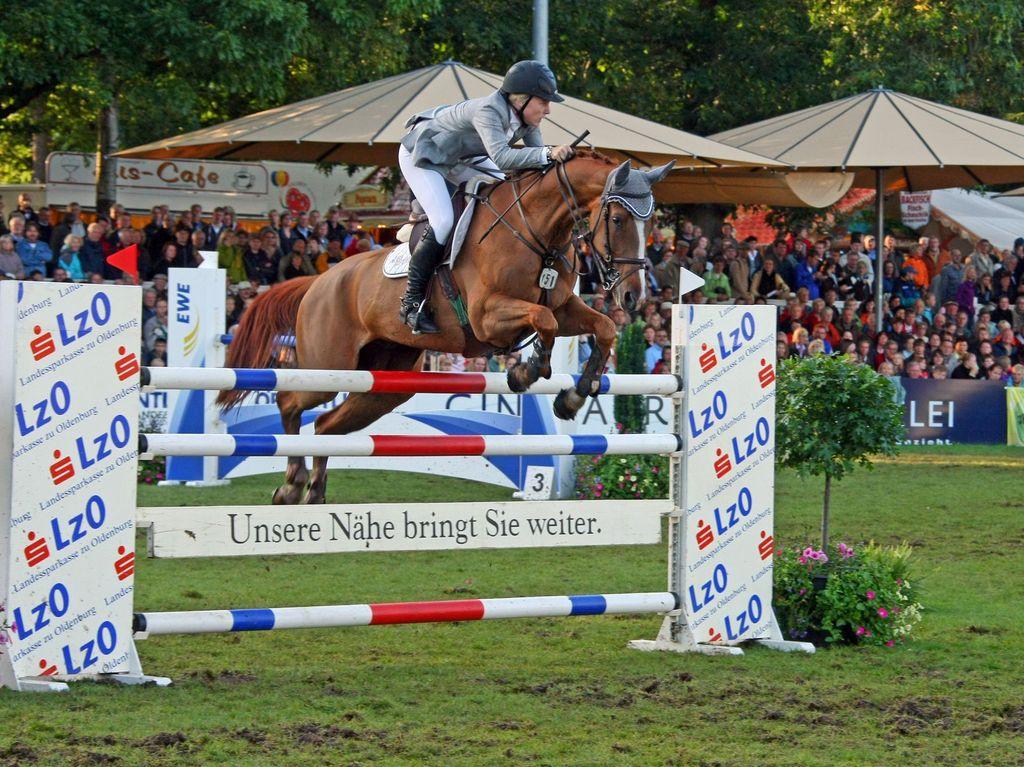 Ein Reiter springt mit seinem Pferd über ein Hindernis, im Hintergrund ist die Tribüne voller Publikum