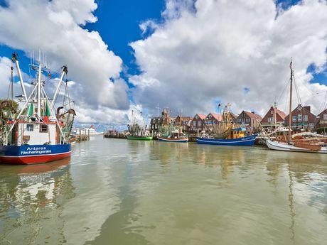 Bunte Fischkutter liegen rechts und links im Hafen von Neuharlingersiel
