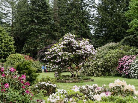 Park mit wunderschönem Garten in Ostfriesland