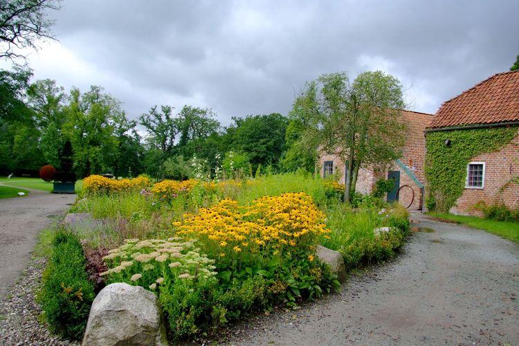 Blühende Blumen in einem Beet im Schlosspark Gödens