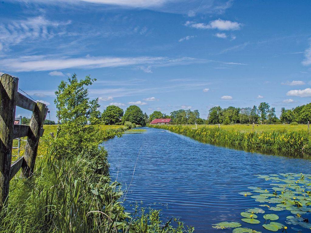 Blick über grün bewachsenen Kanal bei Moormerland