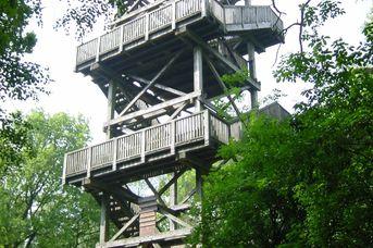 Nordic Walking Park Dammer Berge - Route 9 Bergroute