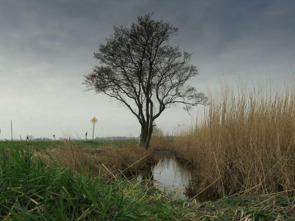 Krimiland Ostfriesland