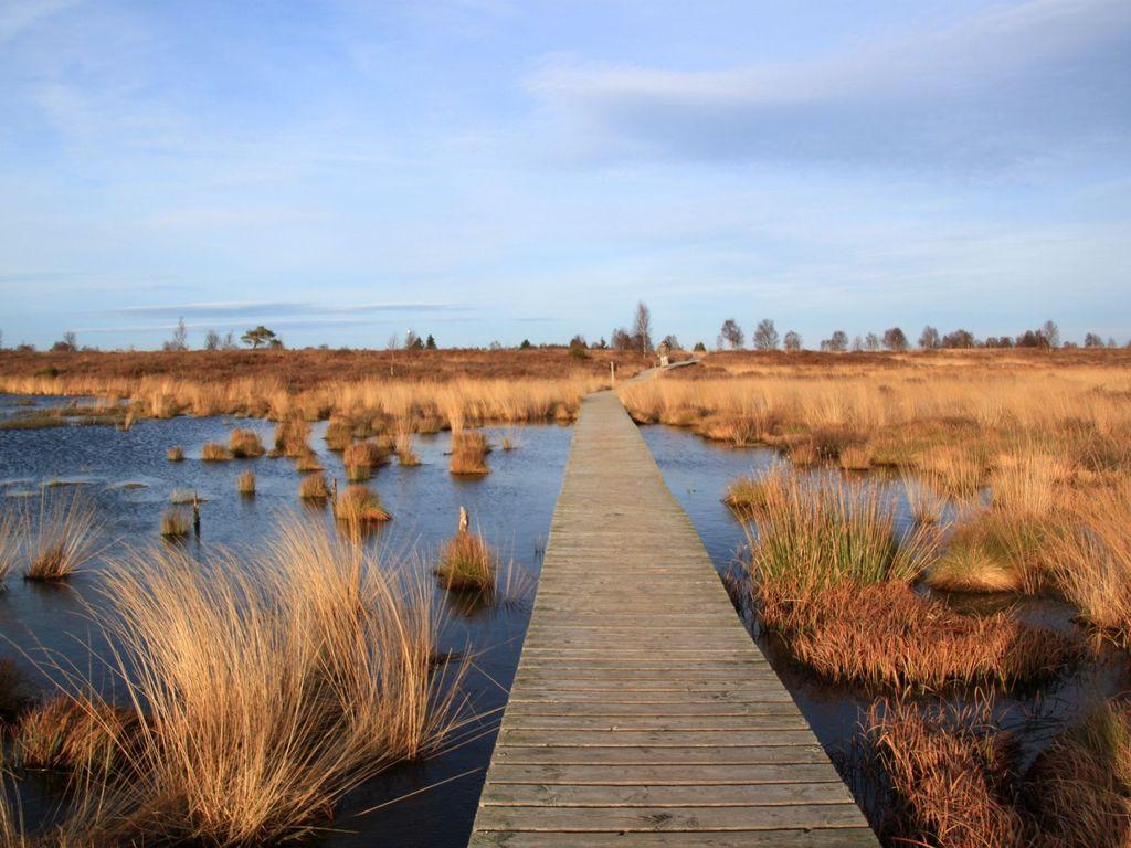 """Der Holzsteg inmitten des Naturlehrpfades """"Ewiges Meer"""""""