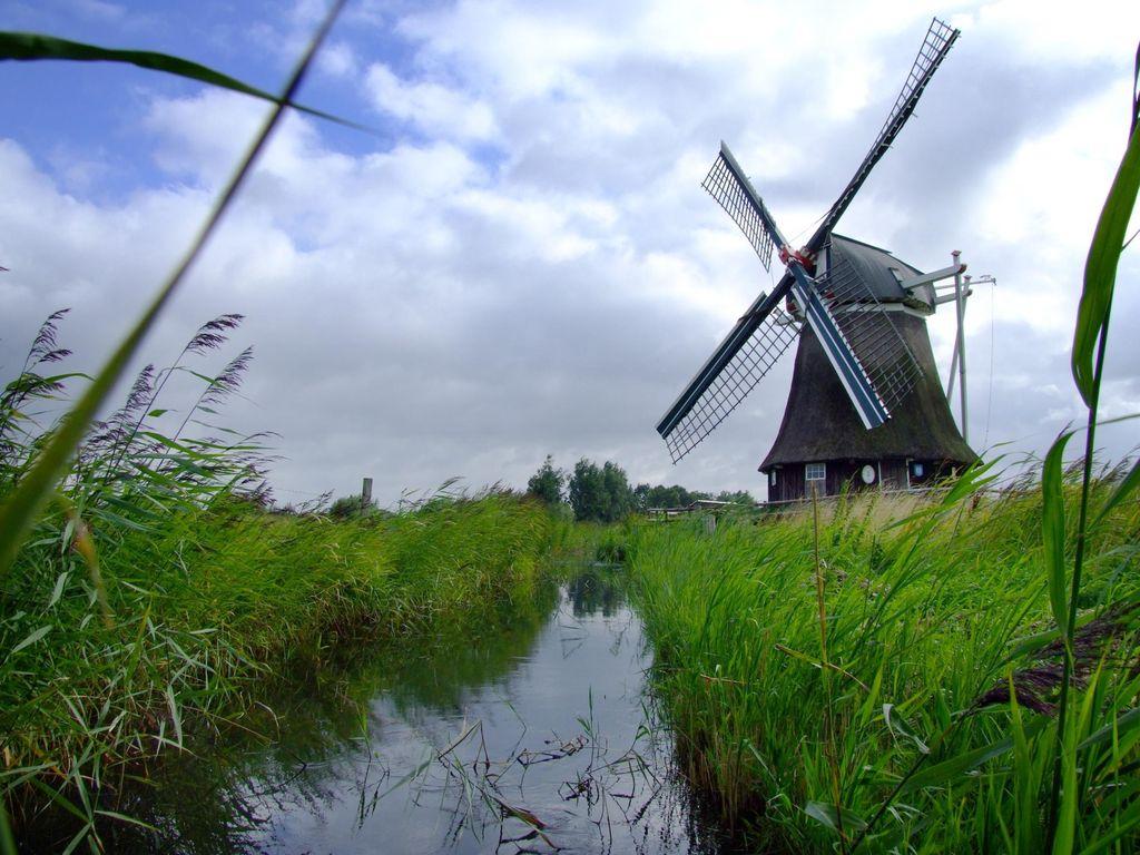 Die Wedelfelder Wasserschöpfmühle Neustadtgödens