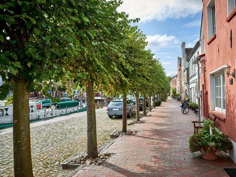 Bäume und Häuser in der Innenstadt in Weener