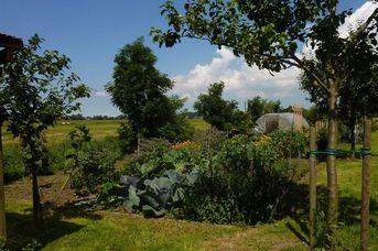 "Naturgarten ""Up Hannes Warft"""
