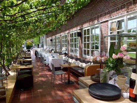 Von Wein berankte Terrasse am Schlosscafé in Hage