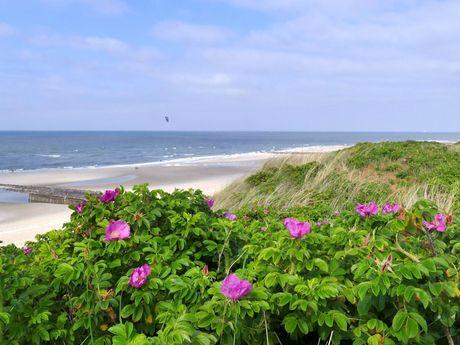 Blick von der Düne auf die Nordsee und den Strand von Wangerooge