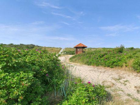 Kleines Häuschen in der Natur am Wegesrand auf Wangerooge