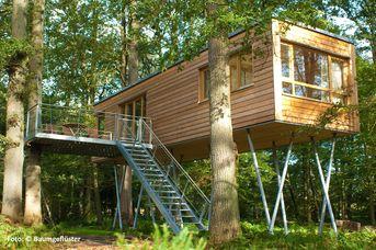 Resort Baumgeflüster - Baumhaus
