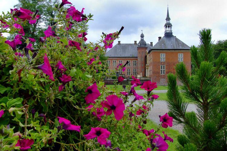Blühende Blumen im Schlosspark mit dem Schloss Gödens im Hintergrund