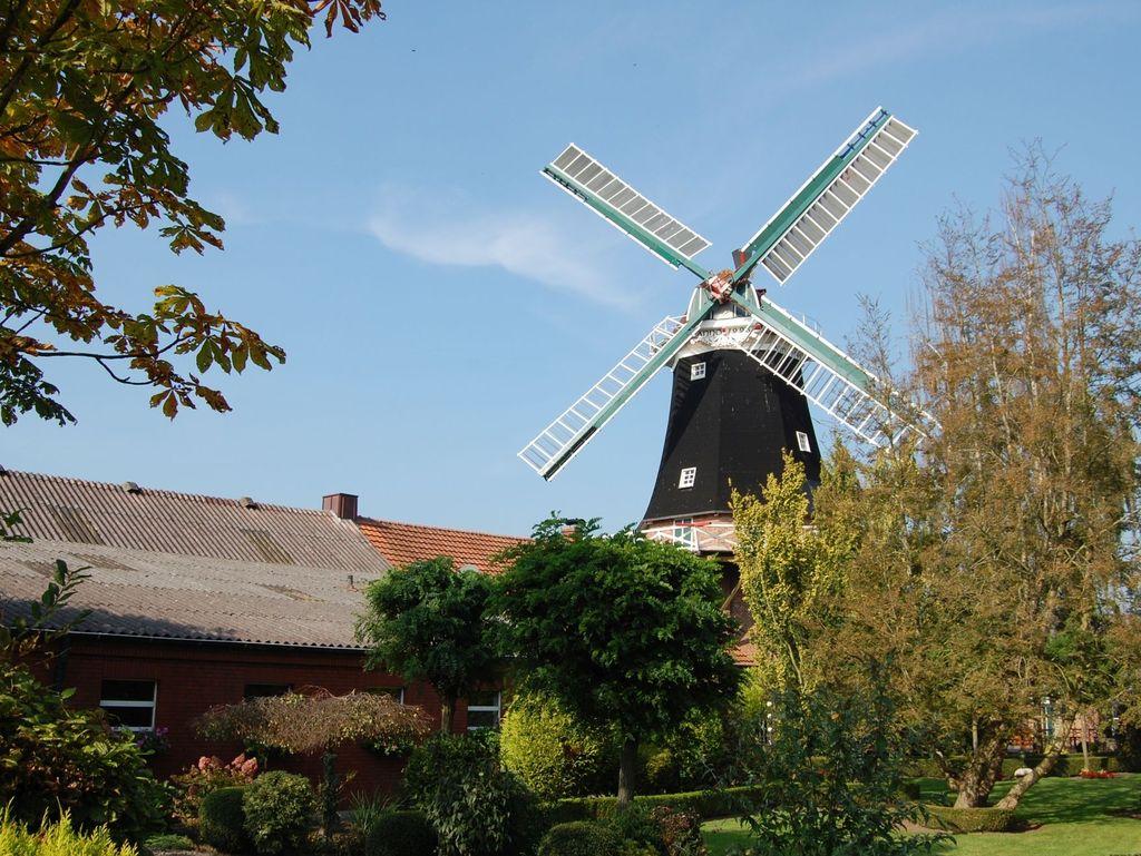 Blick aus einem Garten auf die Windmühle in Rhaude