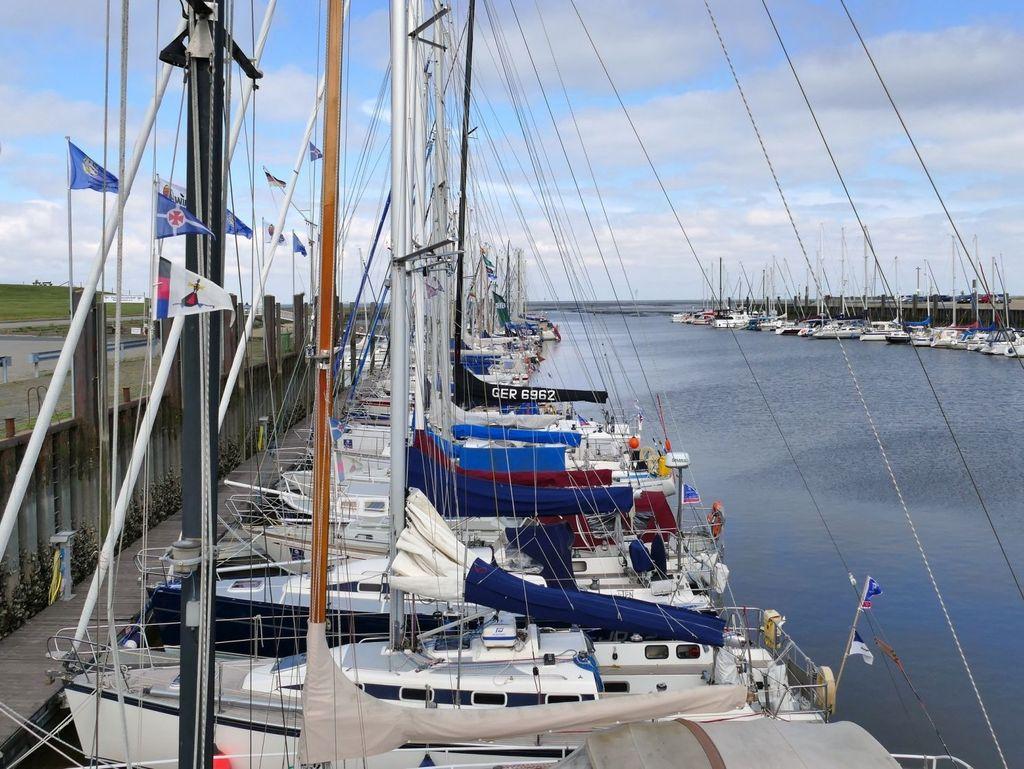 Viele Jachten und Sportboote liegen aneinander gereiht im Hafen von Horumersiel