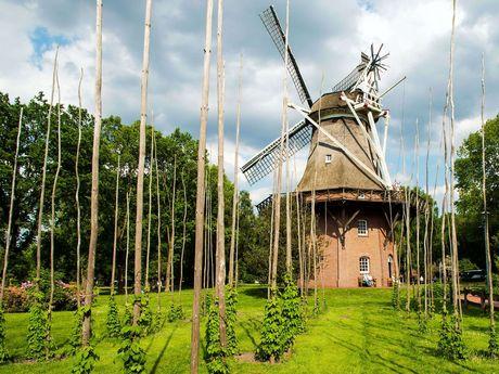 Mühle im Kurpark in Bad Zwischenahn