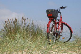 Fahrrad Jungmann