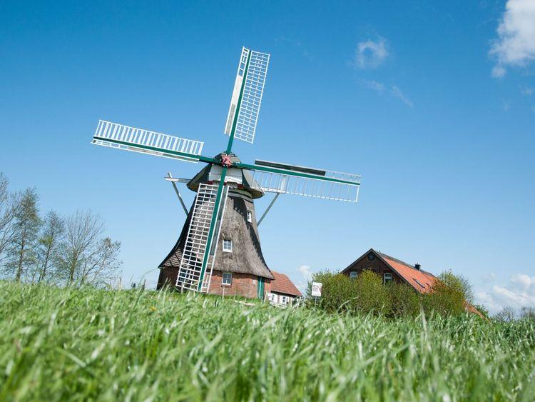 Berdumer Mühle in Wittmund mit Rasen im Vordergrund