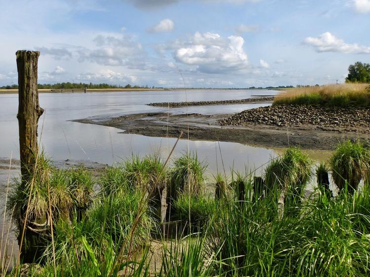 Ausblick auf die Ems in Jemgum, südliches Ostfriesland.