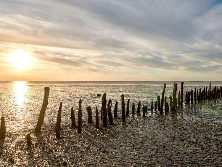 Der Sonnenuntergang spiegelt sich im Wattboden in Ostfriesland