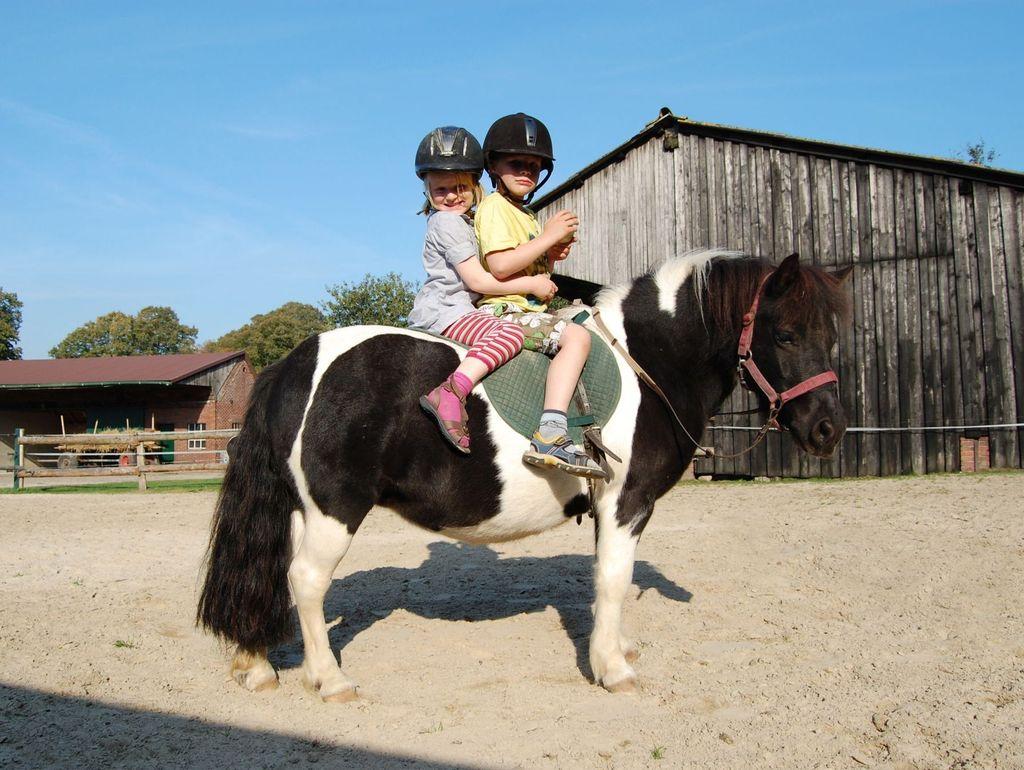 Ein Reitplatz mit zwei Kindern auf einem Pony in Rastede