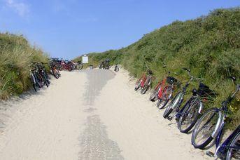 Rad- und Wanderwegenetz