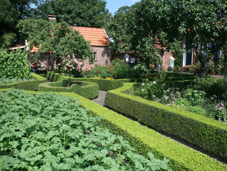 Obst- und Gemüsebeete im Bauerngarten in Friedeburg