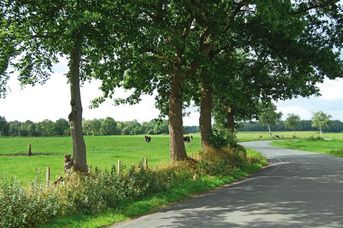 Tour 11: Wold & Woldsee