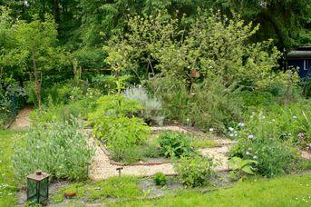 Heilkräuter-Labyrinth-Garten