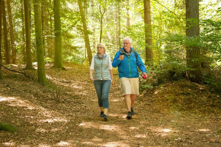 Wandern in Wald und Wiese