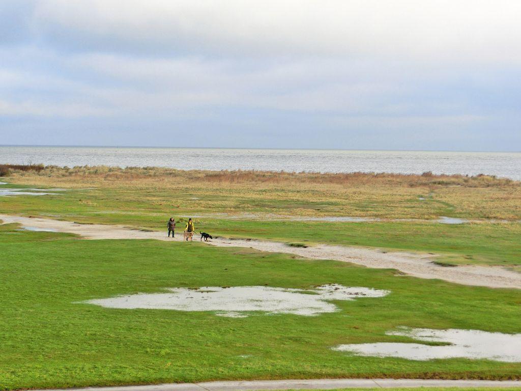 Zwei Spaziergänger mit zwei Hunden laufen an der Küste in Ostfriesland
