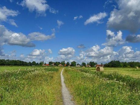 Rundballen im Sommer auf einem Feld bei Westgroßefehn