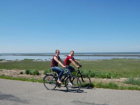 Radfahrer auf der Friesenroute in Norddeich entlang des Wattenmeeres