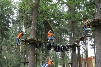Kletterwald - Buhl Activity Park