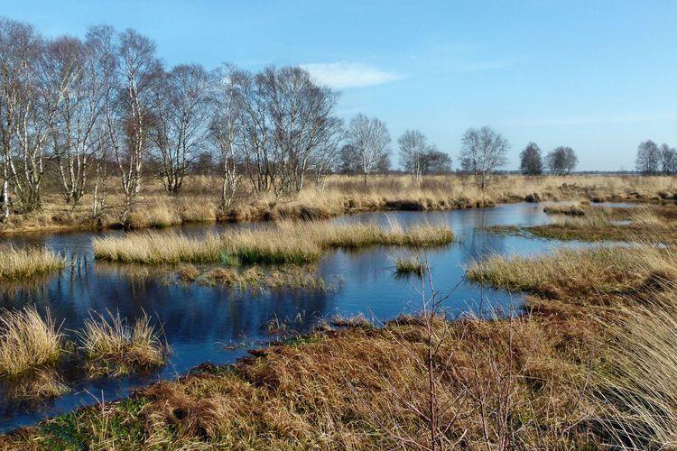 Ostfrieslands Moore