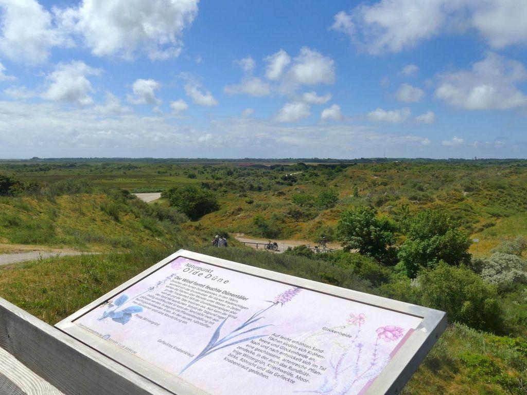 Aussichtspunkt Naturpunkt Olde Düne auf Borkum