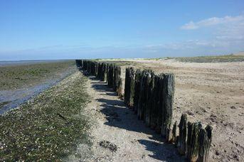 Vor den Deichen Frieslands